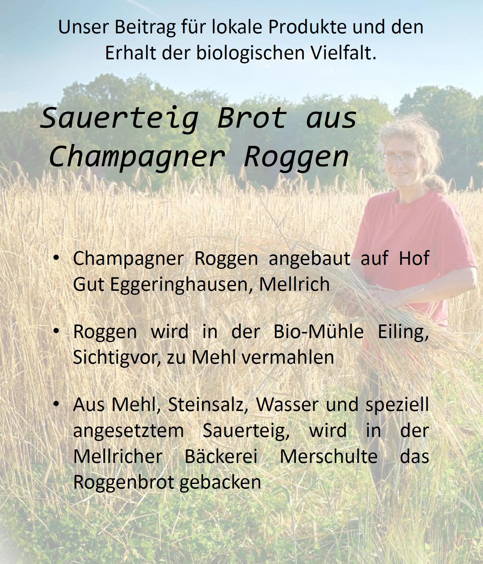 Werbeflyer: Sauerteig-Brot champagner-Roggen lokale bioprodukte